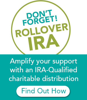 Dont forget rollover IRA